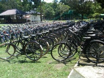 Persewaan sepeda onthel borobudur