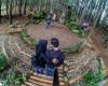 Hutan Pinus Mangunan, Yogyakarta