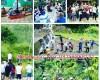 Wisata pedesaan di Jogja