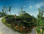 Spot Selfi Kebun teh Nglinggo Puncak Wedosari